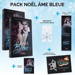 Pack_Noel_Ame_Bleue-Oceane_Ghanem-Plumes_du_Web-Broche