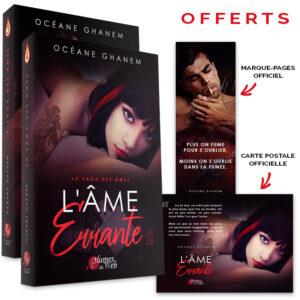 Pack_Ame_Errante-Oceane_Ghanem-Plumes_du_Web-Broche