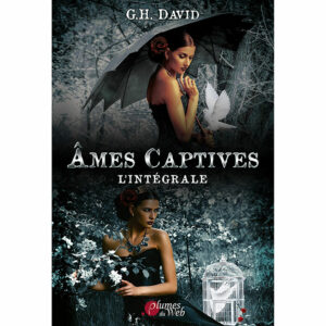 <span class='titre'>Âmes Captives</span> - <span class='sous_titre'>L'Intégrale</span> - <span class='auteur'>G.H. David</span> - <span class='type_produit'>E-book</span> 3